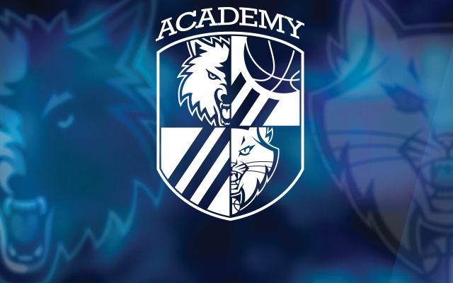 Timberwolves and Lynx Basketball Academy